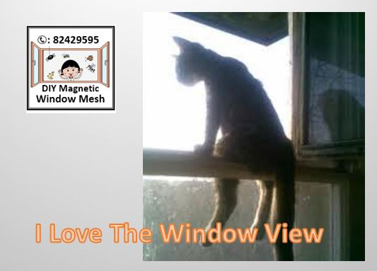 Why Pay More Our Magnetic Insect Screen Window Mesh